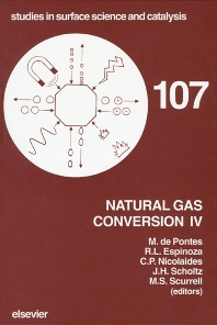 Cover image for Natural Gas Conversion IV