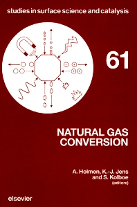 Cover image for Natural Gas Conversion