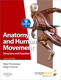 Cover image for Anatomy and Human Movement