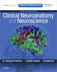 Cover image for Clinical Neuroanatomy and Neuroscience