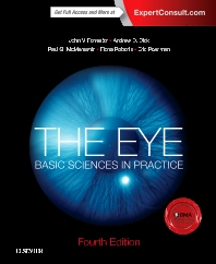 Cover image for The Eye