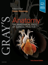 Cover image for Gray's Anatomy