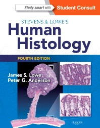 Cover image for Stevens & Lowe's Human Histology