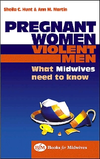 Pregnant Women, Violent Men - 1st Edition - ISBN: 9780750652032