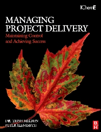 Cover image for Managing Project Delivery: Maintaining Control and Achieving Success