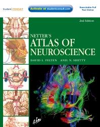 Cover image for Netter's Atlas of Neuroscience