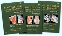 Cover image for The Netter Collection of Medical Illustrations- Musculoskeletal System Package