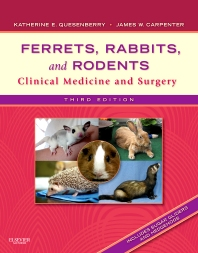 Ferrets, Rabbits, and Rodents - 3rd Edition - ISBN: 9781416066217, 9781437702880