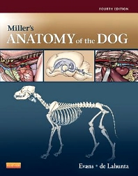 Cover image for Miller's Anatomy of the Dog