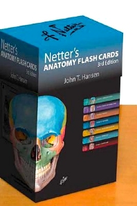 Cover image for Netter's Anatomy Flash Cards