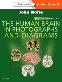 Cover image for The Human Brain in Photographs and Diagrams