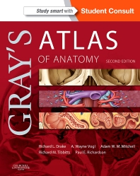 Gray's Atlas of Anatomy - 2nd Edition - ISBN: 9780702052385, 9780323314138