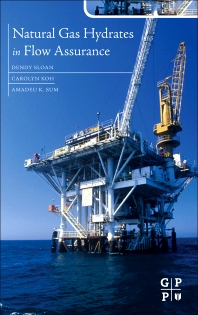 Natural Gas Hydrates in Flow Assurance, 1st Edition,Carolyn Ann Koh,Amadeu Sum,ISBN9781856179454