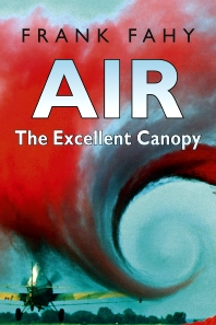 Cover image for Air