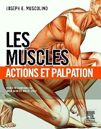 Les muscles : actions et palpation - 1st Edition - ISBN: 9782294728334, 9782294734847