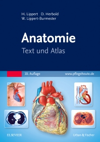 Cover image for Anatomie