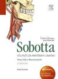 Cover image for Sobotta - Atlante di Anatomia Umana