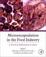 Microencapsulation in the Food Industry, 1st Edition,Anilkumar Gaonkar,Niraj Vasisht,Atul Khare,Robert Sobel,ISBN9780124045682