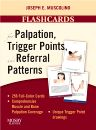 Flashcards for Palpation, Trigger Points, and Referral Patterns, 1st Edition,Joseph Muscolino,ISBN9780323051699