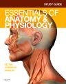 Study Guide for Essentials of Anatomy & Physiology, 1st Edition,Andrew Case,ISBN9780323074513