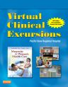 Virtual Clinical Excursions 3.0 for Maternity and Women's Health Care, 10th Edition,Deitra Lowdermilk,ISBN9780323081245