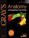 Gray's Anatomy, 40th Edition,Susan Standring,ISBN9780443066849