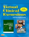 Virtual Clinical Excursions 3.0 for Introduction to Medical-Surgical Nursing, 5th Edition,Adrianne Linton,ISBN9781455700967